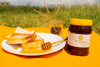 income from honey for beekeepers